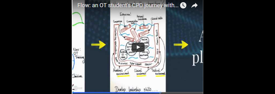 Flow: an OT student's CPD journey with the Kawa Model (Gill Smith)