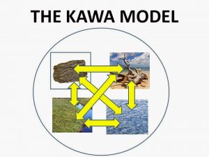 kawa_crosssection